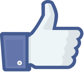 7 BEST (worst) Things About Facebook :)!